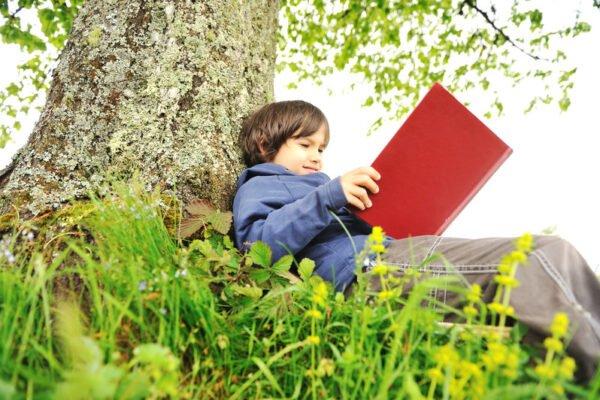 chłopiec uczący nie pod drzewem